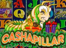 Слот Cashapillar доступен для бесплатной игры