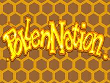Pollen Nation: сорвите куш в онлайн-аппарате от Microgaming