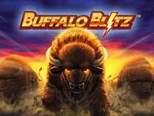Атака Бизона