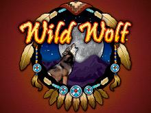 Виртуальный аппарат Wolf Run – бесплатная игра