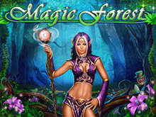 Magic Forest от Playson – игровой автомат с бонусами